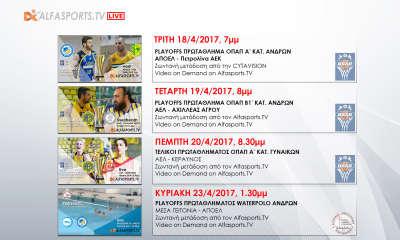 ALFASPORTS TV - LIVE SCHEDULE