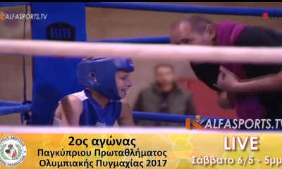 boxing championship @ Alfasports TV